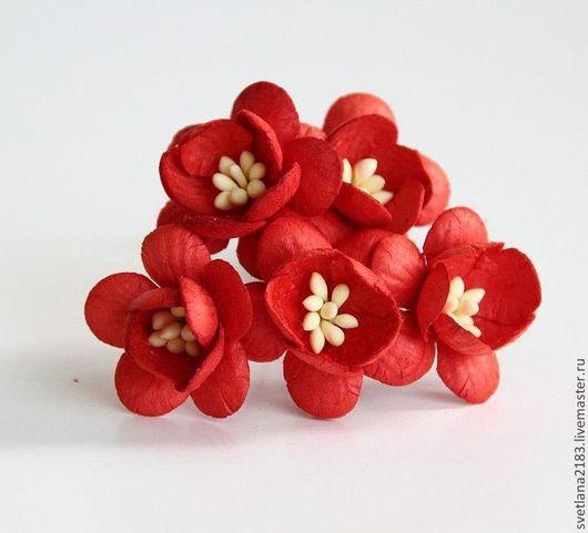 Открытки и скрапбукинг ручной работы. Ярмарка Мастеров - ручная работа. Купить цветы вишни 3 цвета - 5 штук. Handmade.
