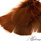 Другие виды рукоделия ручной работы. Ярмарка Мастеров - ручная работа. Купить Перо индейки натуральное, окрашенное коричневое №24. Handmade.