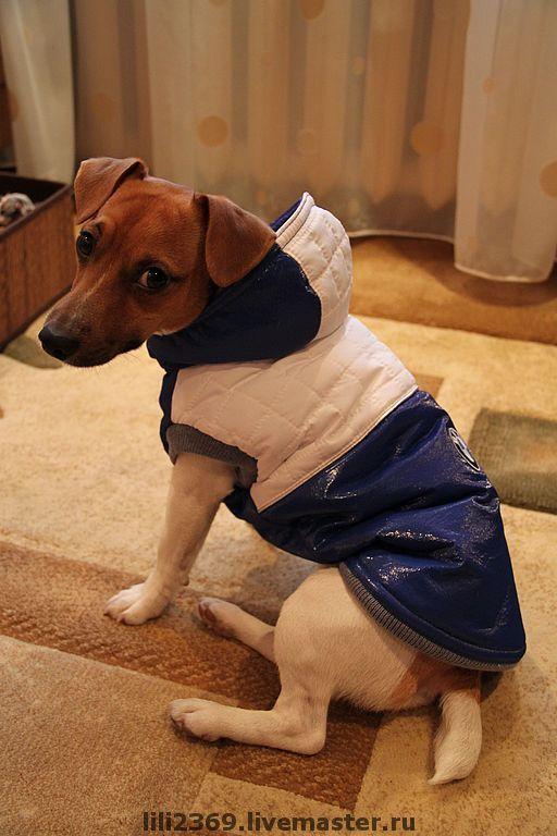 """Одежда для собак, ручной работы. Ярмарка Мастеров - ручная работа. Купить Жилет для собаки """"Бавария"""". Handmade. Жилет для собаки, атлас"""