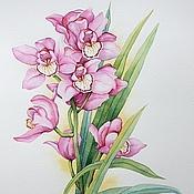 """Картины и панно ручной работы. Ярмарка Мастеров - ручная работа Рисунок """"Орхидея"""" акварель. Handmade."""