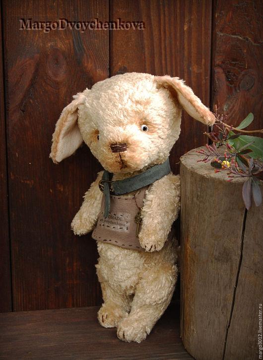 Мишки Тедди ручной работы. Ярмарка Мастеров - ручная работа. Купить Арчи. Handmade. Бежевый, тедди собака, handmade, щеночек