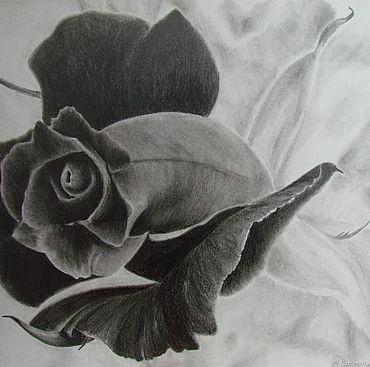 """Картины и панно ручной работы. Ярмарка Мастеров - ручная работа Картина с цветком """"Черная роза"""" - картина карандашом. Handmade."""