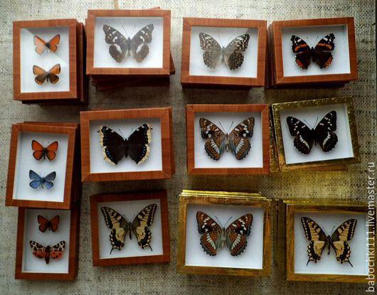 Животные ручной работы. Ярмарка Мастеров - ручная работа. Купить Бабочки в рамках. Handmade. Разноцветный, подарок на день рождения, стекло