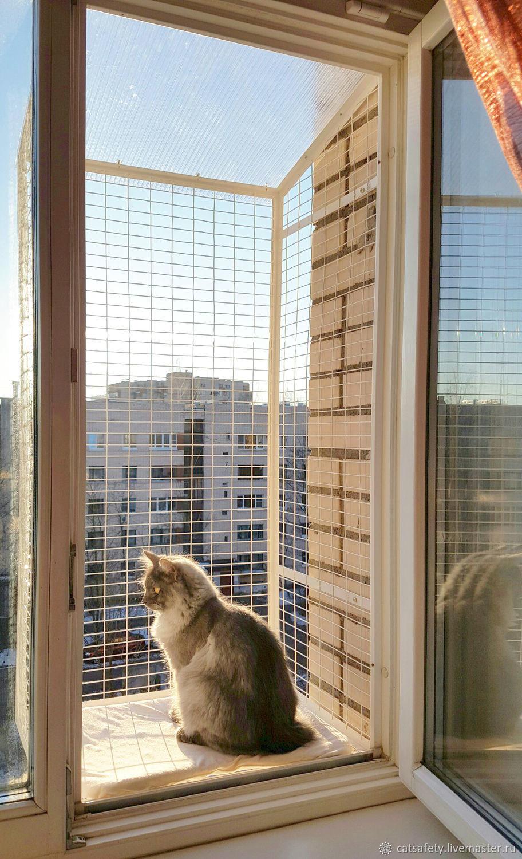 Безопасность и забота - кошка на окошке.