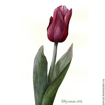 Открытки ручной работы. Ярмарка Мастеров - ручная работа Открытка авторская Тюльпан, цветы акварель бордовый. Handmade.