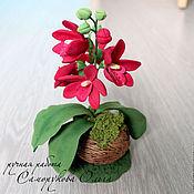 Цветы и флористика ручной работы. Ярмарка Мастеров - ручная работа Орхидея в кокосе. Handmade.