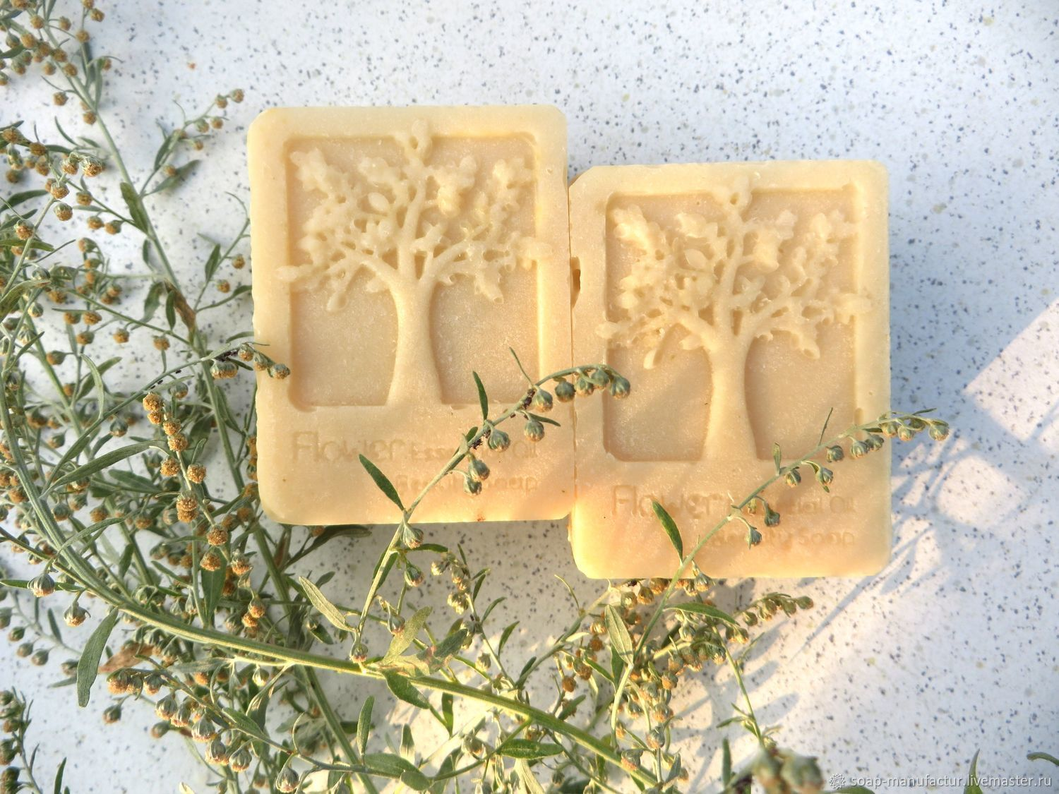 Soap from scratch CASTILIAN WORMWOOD olive, Soap, Anapa,  Фото №1