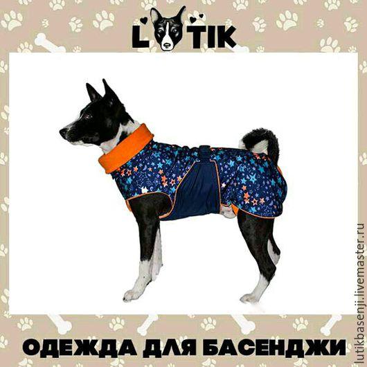 Одежда для собак, ручной работы. Ярмарка Мастеров - ручная работа. Купить Попона Лёгкая. Handmade. Попона, одежда для собак