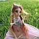 Коллекционные куклы ручной работы. Заказать Шарнирная рыжая кошка. Анастасия Науменко (KittyNN). Ярмарка Мастеров. Оранжевый, бжд, шарнир