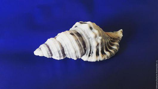 """Мыло ручной работы. Ярмарка Мастеров - ручная работа. Купить Мыло""""В мечтах о море"""". Handmade. Комбинированный, мыло ручной работы"""