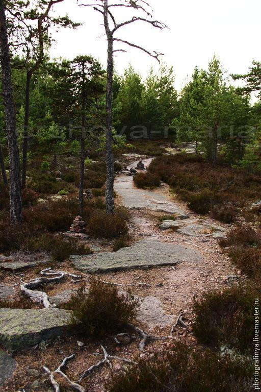 Тайны каменных троп. Авторская фотокартина. Ершова  Мария