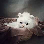 Куклы и игрушки handmade. Livemaster - original item Teddy Animals: white kitten. Handmade.