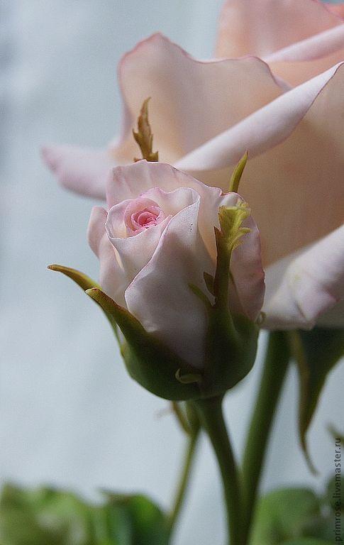 Искусственные растения ручной работы. Ярмарка Мастеров - ручная работа. Купить роза с бутонами. флористическая полимерная глина. Handmade. Роза
