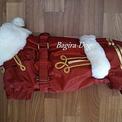 """Для домашних животных, ручной работы. Ярмарка Мастеров - ручная работа Зимний комбинезон для таксы """" Гусар """" со шлейкой. Handmade."""