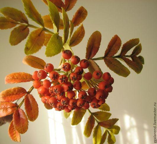 Цветы ручной работы. Ярмарка Мастеров - ручная работа. Купить Рябина из полимерной глины. Handmade. Рыжий, Осенний лес