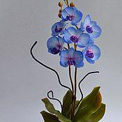 Цветы и флористика ручной работы. Ярмарка Мастеров - ручная работа Декоративная орхидея из полимерной глины. Handmade.