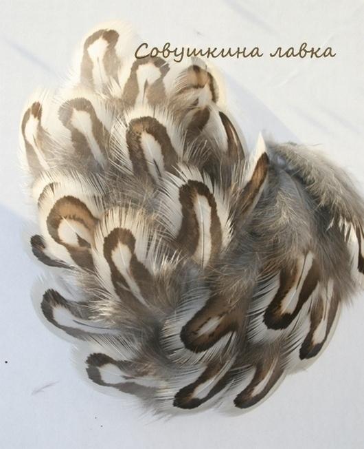 Другие виды рукоделия ручной работы. Ярмарка Мастеров - ручная работа. Купить Перья разные (наборы). Handmade. Перья