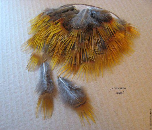 Другие виды рукоделия ручной работы. Ярмарка Мастеров - ручная работа. Купить (10 шт) Перья золотого фазана. Handmade.