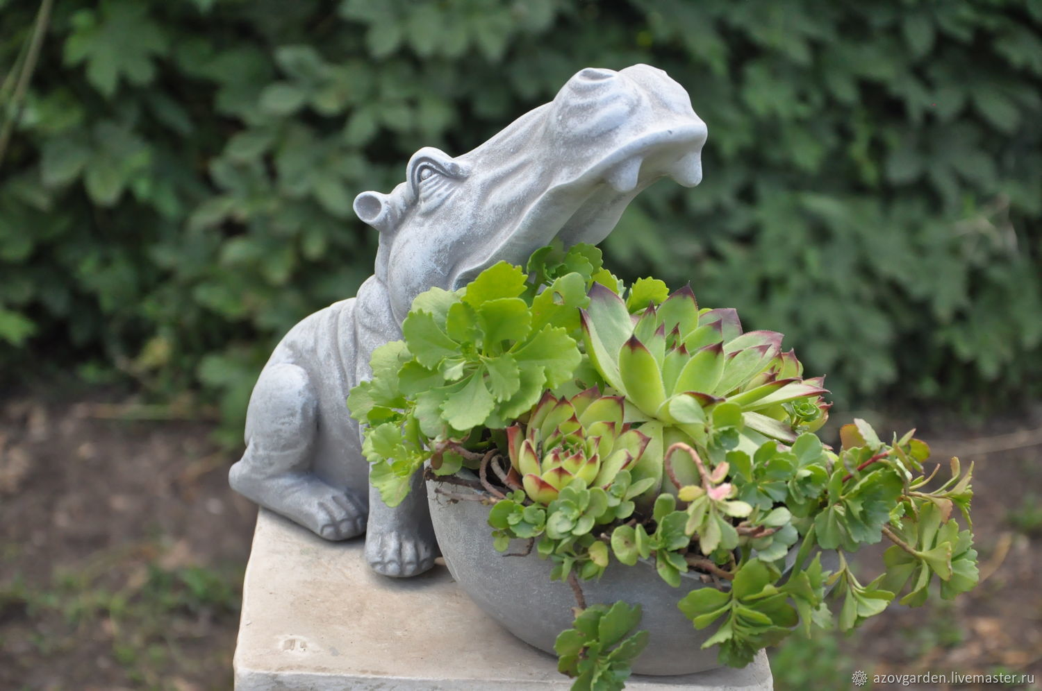 Planters Hippopotamus, pot, drinking bowl, stand for small things, Vases, Azov,  Фото №1