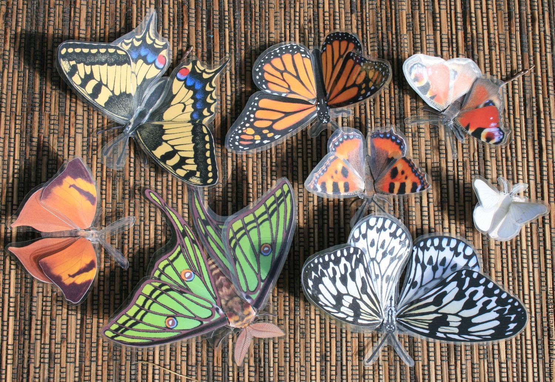 Подарки бабочка с-петербург