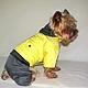 """Одежда для собак, ручной работы. Заказать Комбинезон """"Яркий"""". Лиля Одежда для собак. Ярмарка Мастеров. Йоркширский терьер, той-терьер"""