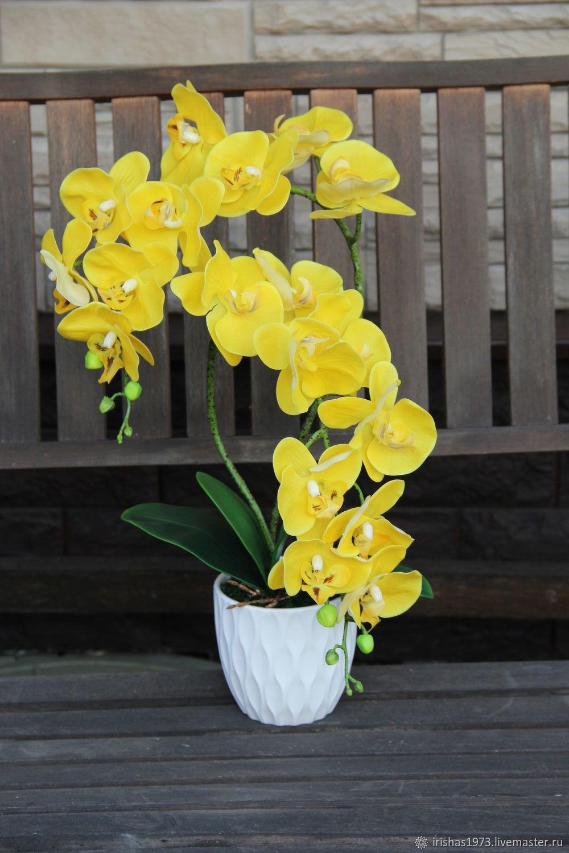 Композиция для интерьера орхидея фаленопсис, Композиции, Мичуринск, Фото №1