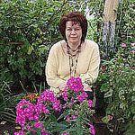 Галина Романова (flora4u) - Ярмарка Мастеров - ручная работа, handmade
