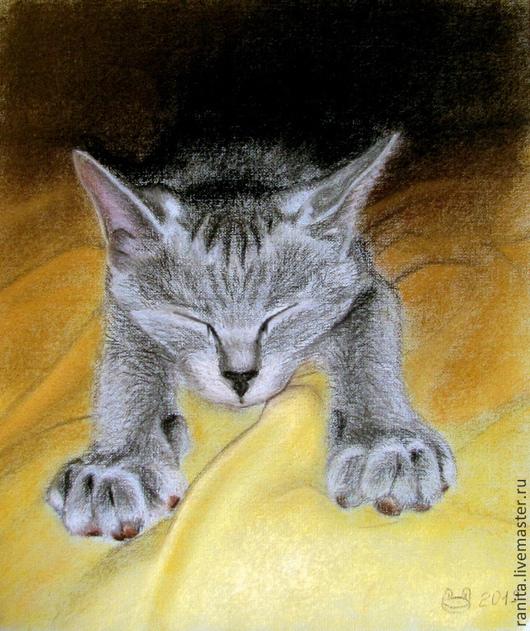 Животные ручной работы. Ярмарка Мастеров - ручная работа. Купить Картина пастелью. Портреты животных на заказ. Спящий кот.. Handmade.