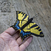 Украшения handmade. Livemaster - original item Brooch leather swallowtail Butterfly South. Handmade.