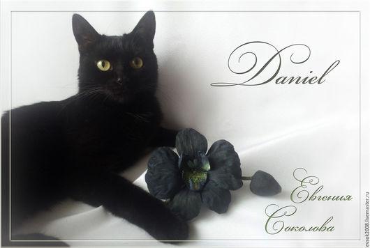 """Броши ручной работы. Ярмарка Мастеров - ручная работа. Купить Чёрная орхидея из шёлка, брошь.  """"Daniel"""". Handmade. Черный"""