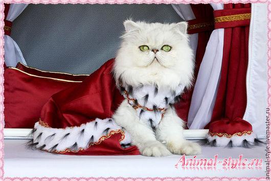 `Царская особа` выставочный наряд для кошки