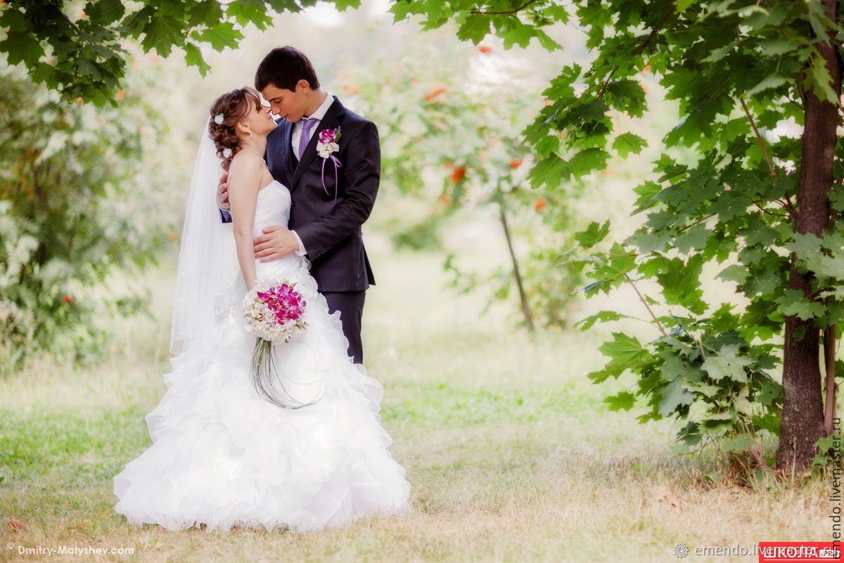 Клип в одну песню (свадебный, love story и др.), Видео, Биробиджан,  Фото №1