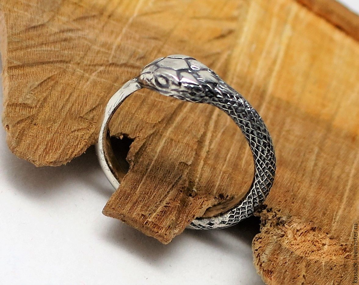 Ouroboros ring unisex wedding engagement unique handcrafted ring, Rings, Zaporozhye,  Фото №1