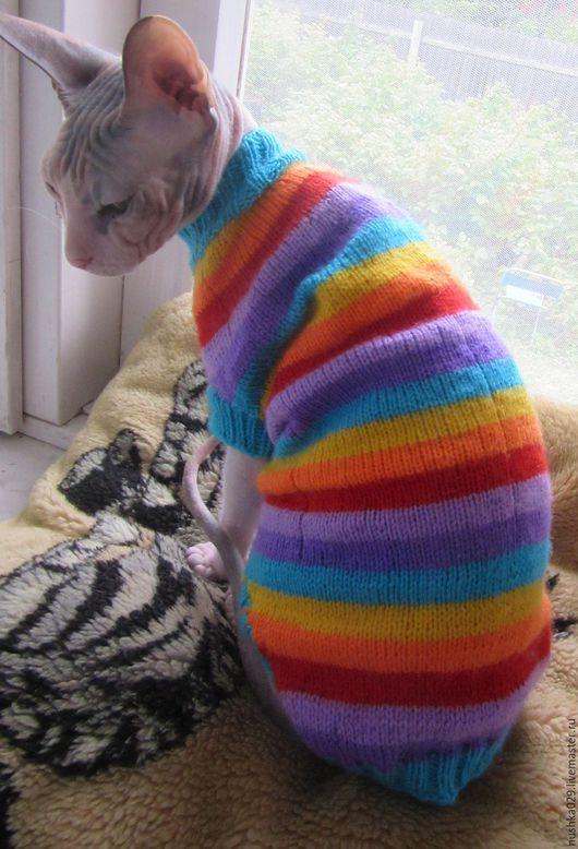 Одежда для кошек, ручной работы. Ярмарка Мастеров - ручная работа. Купить Полосатый свитер. Handmade. Комбинированный, свитер для сфинкса