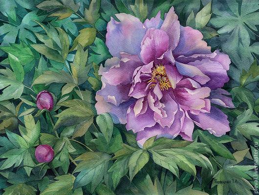 Картины цветов ручной работы. Ярмарка Мастеров - ручная работа. Купить Картина акварелью Сиреневый пион. Handmade. Зеленый, цветок