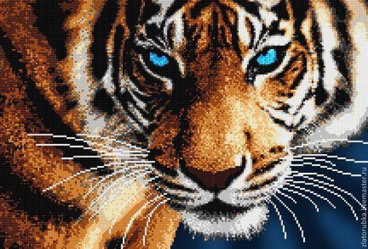 Взгляд тигра.