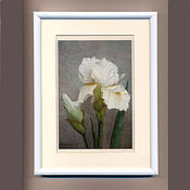 Картины и панно ручной работы. Ярмарка Мастеров - ручная работа Постер картины акварелью Белый Ирис, серый белый. Handmade.