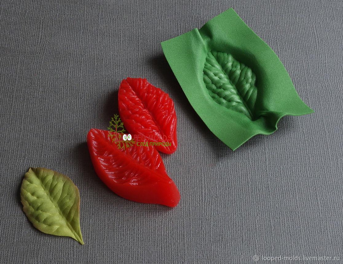 Молд №7 Роза дикая, Молды, Нижний Новгород,  Фото №1