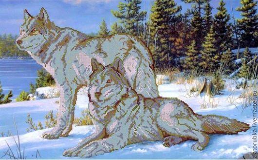 Снежные волки.