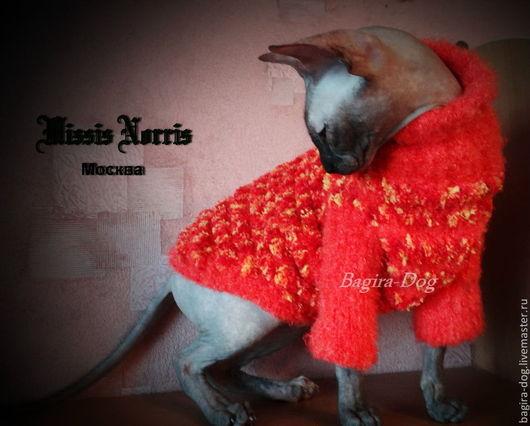 Одежда для кошек, ручной работы. Ярмарка Мастеров - ручная работа. Купить Свитера из австралийской пряжи. Handmade. Одежда для кошек