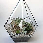 Цветы и флористика handmade. Livemaster - original item The Floriana. Geometric Floriana Drop with succulents, 32 cm. Handmade.