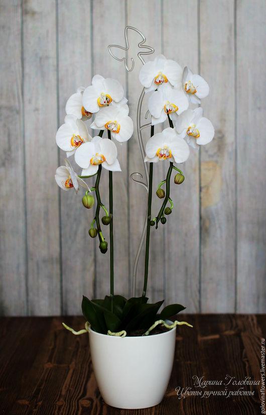 Цветы ручной работы. Ярмарка Мастеров - ручная работа. Купить Орхидея фаленопсис белого цвета из полимерной глины. Handmade. Белый
