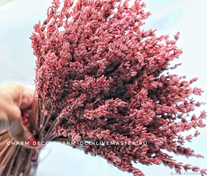 Лаванда стабилизиров. розовая (1пучок) 300веточек, Искусственные фрукты, Санкт-Петербург, Фото №1