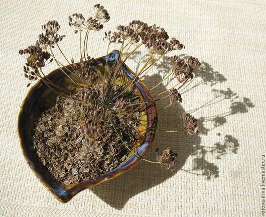 Семена укропа используют в кулинарных целях в качестве пряности, в медицине — как эффективное лечебное средство, а в косметологии — для безопасного ухода за кожей лица и рук, волос.