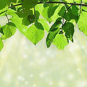 Картины и панно ручной работы. Ярмарка Мастеров - ручная работа картина Весенняя листва. Handmade.