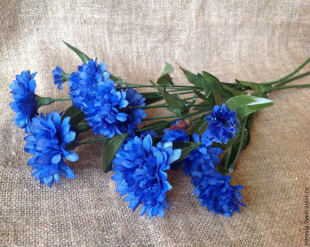 Купить василек цветы цветы на заказ в санкт петербурге