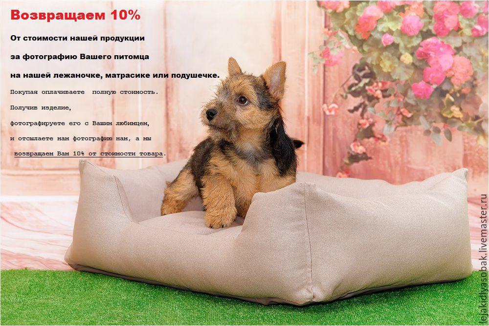 bed for dog, Lodge, Kaliningrad,  Фото №1