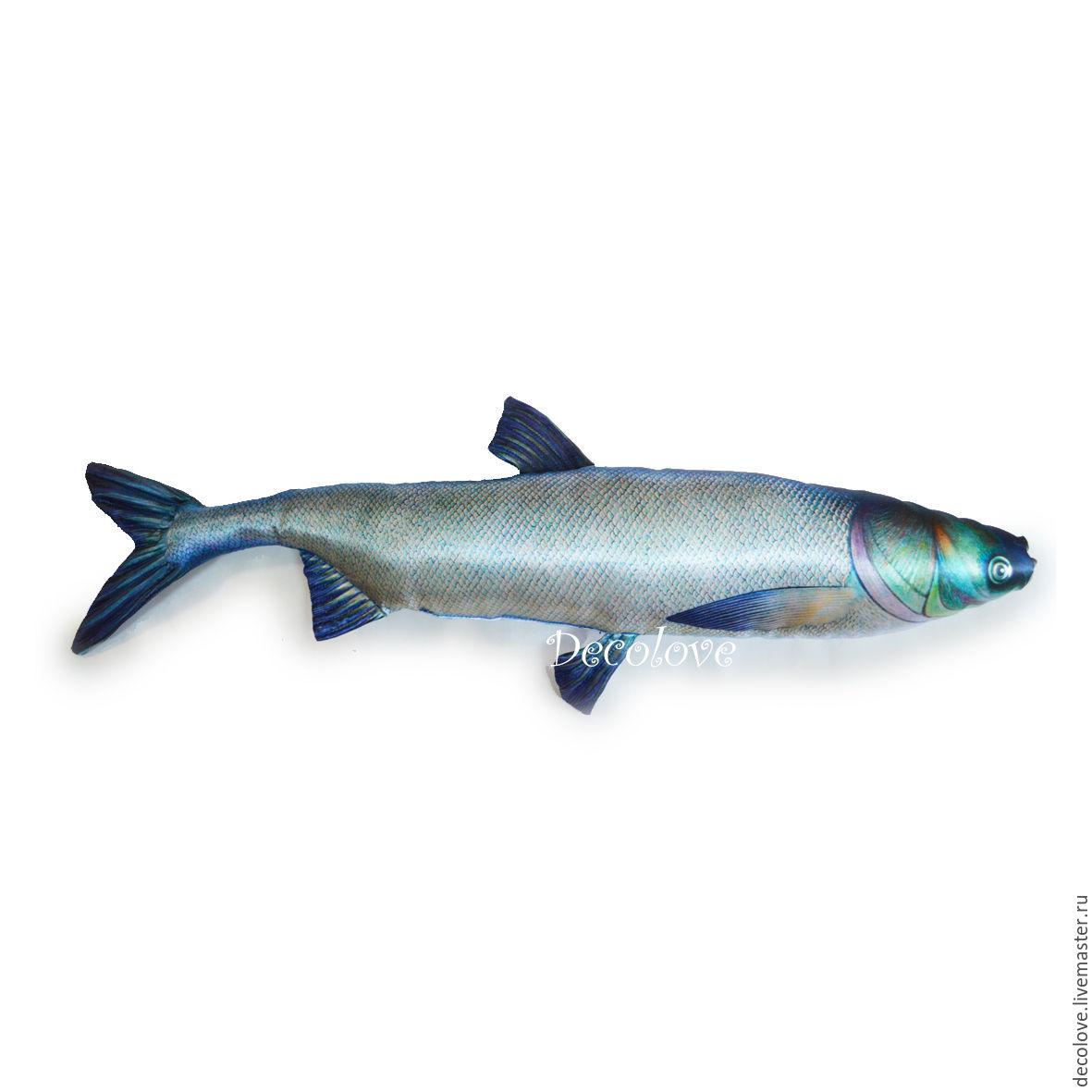 толстолобик что за рыба польза