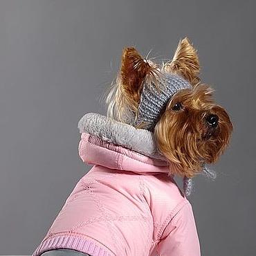 Для домашних животных, ручной работы. Ярмарка Мастеров - ручная работа Комбинезон для собак Ясли. Handmade.