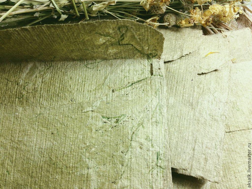 Как из крапивы сделать бумагу